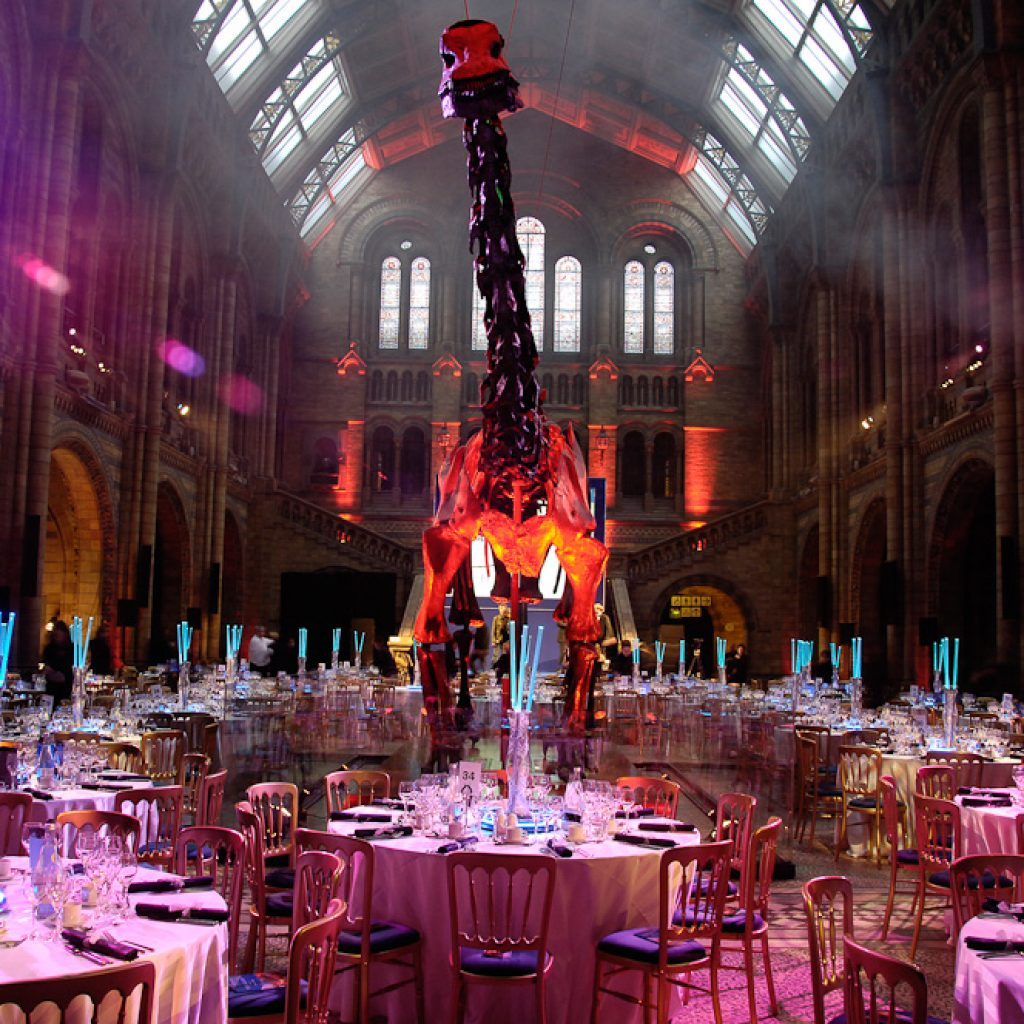 Dine with a Diplodocus