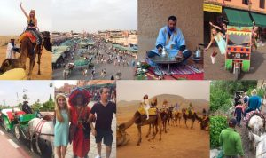 Sights & sounds of Marrakech
