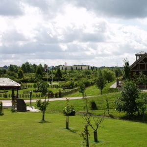 Views of the National Arboretum
